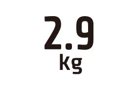 2.9kg