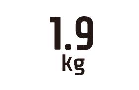 1.9kg