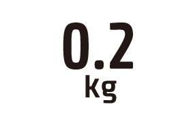 0.2kg