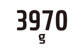 3970g