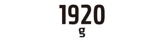 1920g