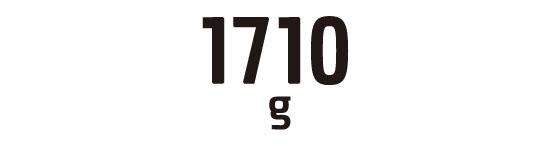 1710g